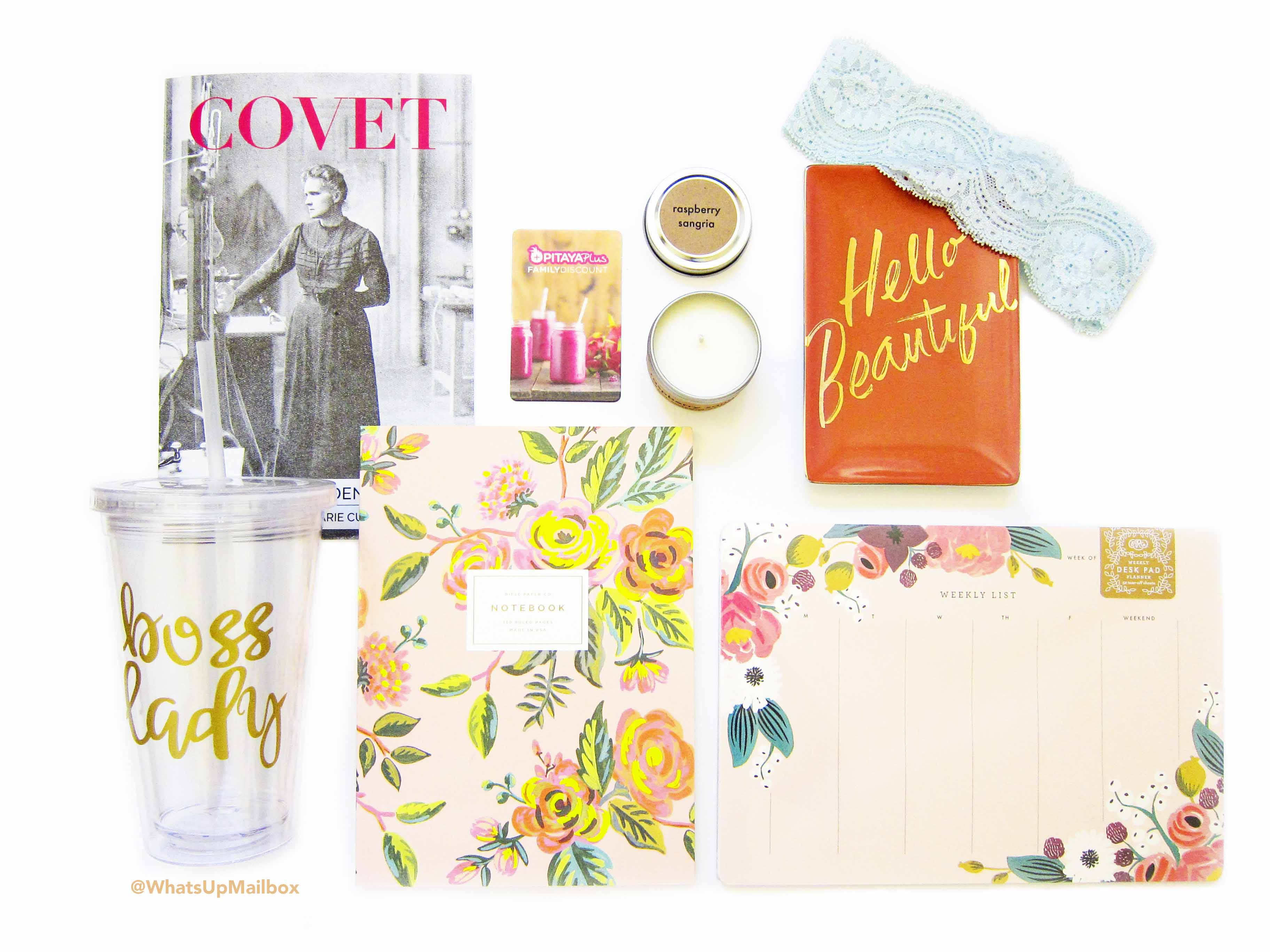 Covet Crate Girl Boss July 2016 Items