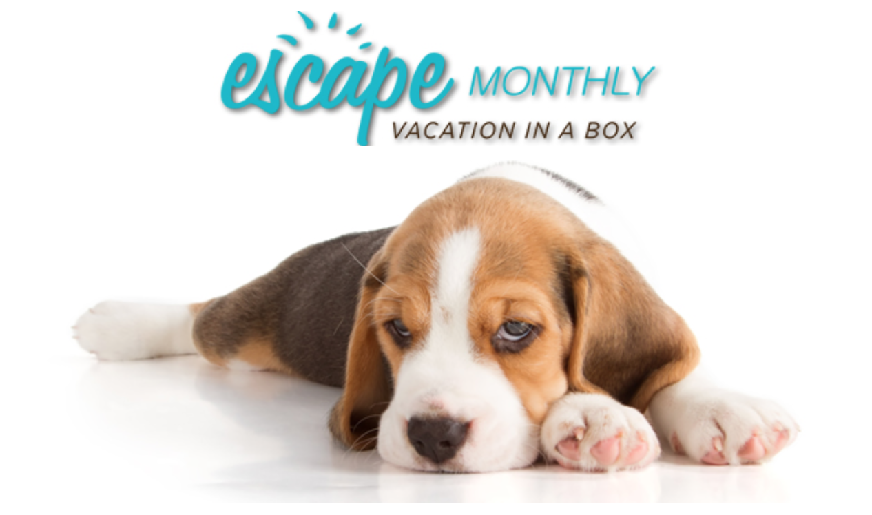 Escape Monthly No Longer In Business