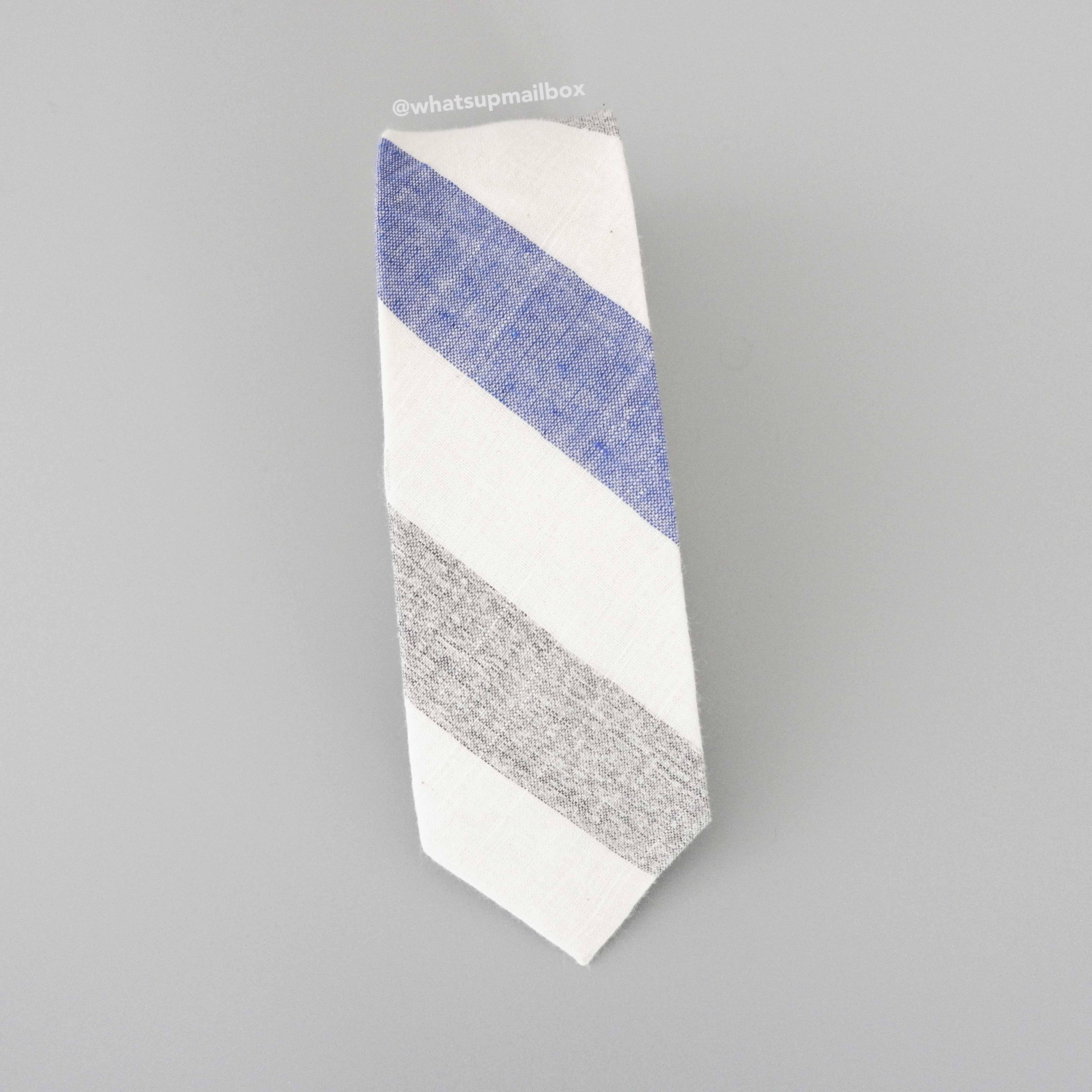 Aster Ganos Neck Tie