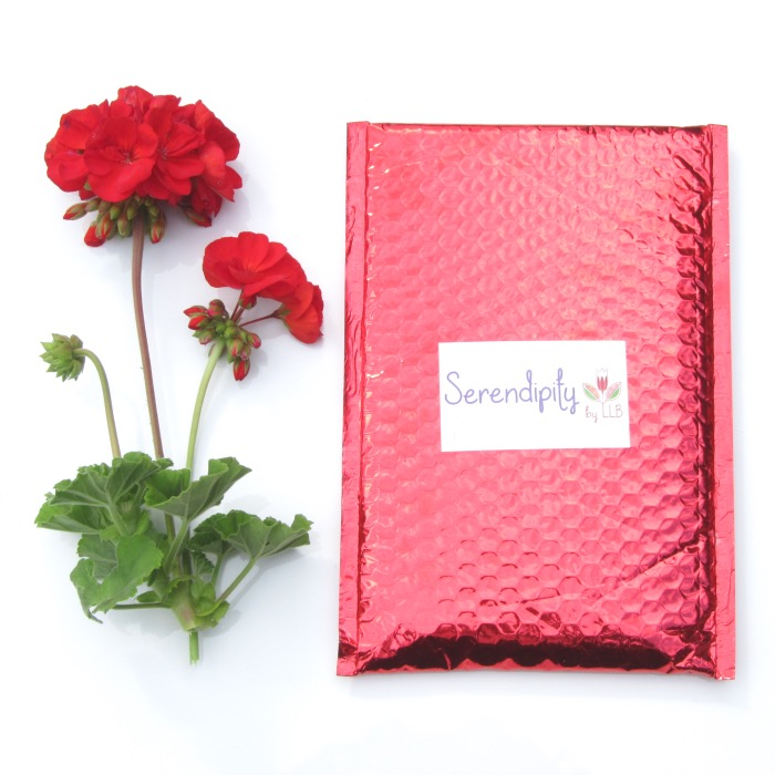 Serendipity by Little Lace Box June 2015 Review!