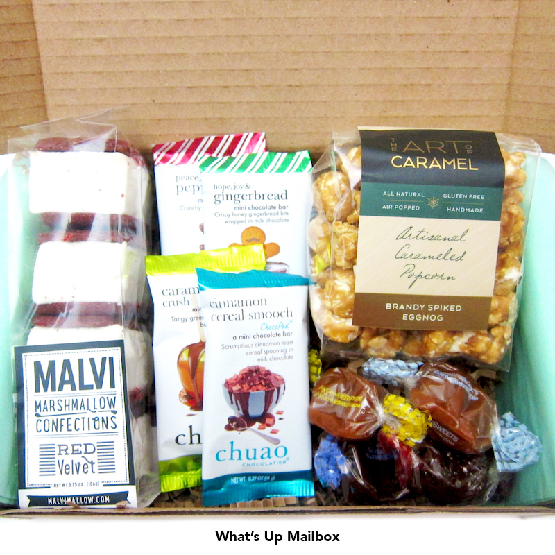 Treatsie Subscription Box Review December 2015 + Coupon!